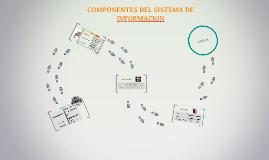 COMPONENTES DEL SISTEMA DE INFORMACION