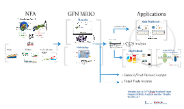 Introduction to GFN MRIO analysis and the results Workbook