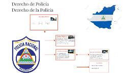 Derecho de Policía
