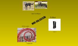 M.Goldstein -Tempo6-Test