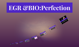 EGR &BIO:Perfection