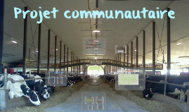 Projet communautaire
