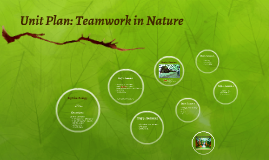 Unit Plan: Ecology