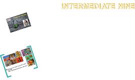 INTERM11