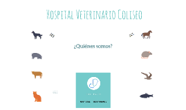 Hospital Veterinario Coliseo