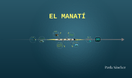 EL MANATÍ