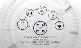 TERCERA FASE: ANÁLISIS DAFO, ANÁLISIS DE