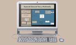 Bases de datos de texto y multimedia