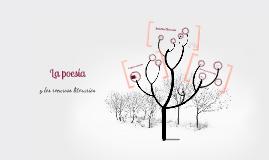 La poesia y los recursos literarios