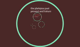 the timeline of the platapus