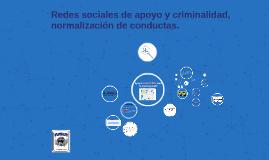 REDES DE APOYO CRIMINAL