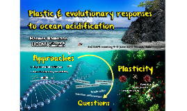 Evolution and plasticity in an acidifying ocean
