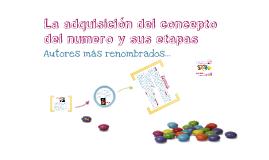 Copy of La adquisicion del concepto del numero y sus etapas