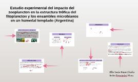 Estudio experimental del impacto del zooplancton en la estru