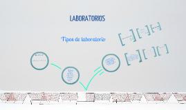 Copy of Tipos de Laboratorios