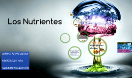 Los Nutrientes