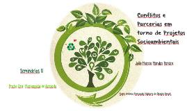 Conflitos e Parcerias em Torno de Projetos Ambientais