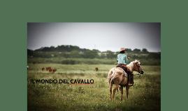 IL MONDO DEL CAVALLO