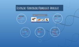 Divergenz-Konvergenz/Homologie-Analogie