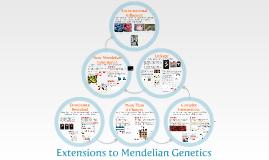 AP Bio- Mendelian Genetics 2:  Extensions to Mendelian Genetics