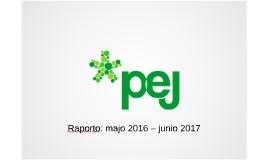 PEJ: Raporto 2017