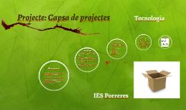 Projecte 1: Capsa de projectes
