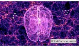 Unit 4 Consciousness