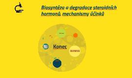 Biosyntéza a degradace steroidních hormonů