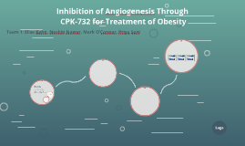 CKD-732 as a Treatment for Angiogenesis in Obesity