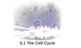 5.1 The Cell Cycle