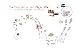 Copy of Contaminación visual y ambiental del cigarrillo