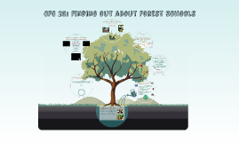 CFC 25: Finding out about Forest Schools LO 3 & 4