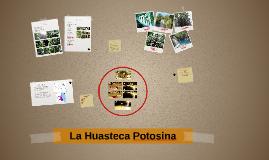 La Huasteca Potosina