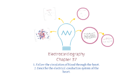 Copy of Copy of Electrocardiography CHAPTER 37 Delmar