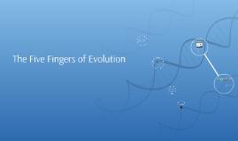 TOEFL:Evolution