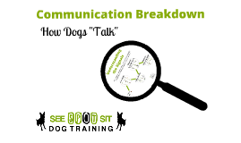 Copy of Communication: How Dog's Talk