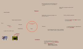 Copy of La producción de televisión