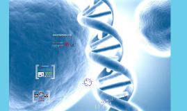 Copy of Biofarmacos