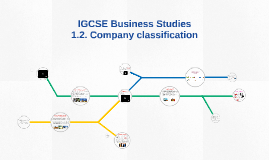 Copy of IGCSE Business Studies - Business classification
