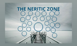 the neridic zone
