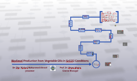 Biodiesel Production from Vegetable Oils using ScCO2 Conditi