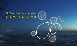 Copy of Obtención de energía a partir de lípidos