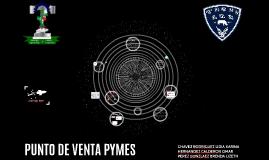 PUNTO DE VENTA PYMES