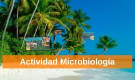 Actividad Microbiologia