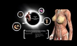 Copy of anatomía del  sistema reproductor femenino