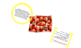 Copy of Salsa de Tomate Fruco - Mercadeo