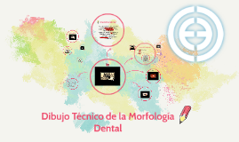 dibujo tcnico de la anatoma dental by Pao Zepeda on Prezi