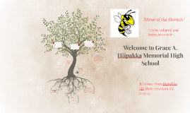 Welcome to Grace Anne Hiipakka Memorial High School