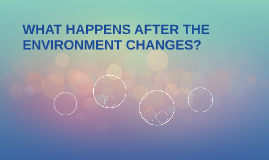 WHAT HAPPENS AFTER THE ENVIRONMENT CHANGES?