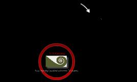 Copy of Te Kotahitanga